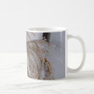 Yellow cedar with hoarfrost classic white coffee mug