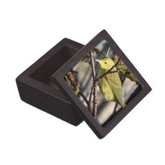 Yellow Chickadee Premium Gift Box