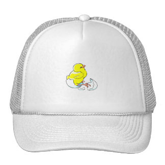yellow chicken hatching baby chick.png trucker hat
