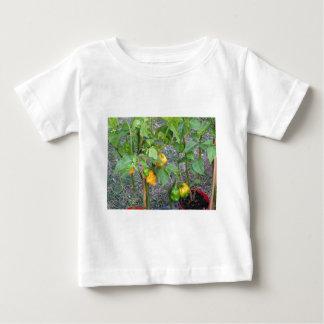 Yellow chili peppers baby T-Shirt