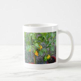 Yellow chili peppers coffee mug