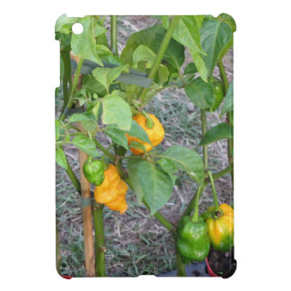 Yellow chili peppers cover for the iPad mini