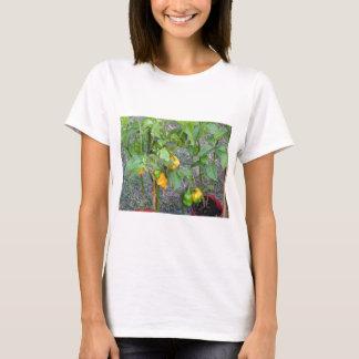 Yellow chili peppers T-Shirt