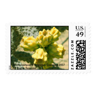 Yellow Cholla  Cactus Flower Stamps