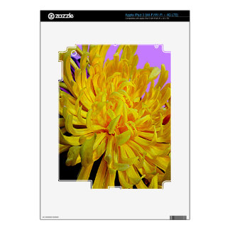 Yellow Chrysanthemum Flower Gifts by Sharles iPad 3 Skins