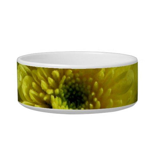Yellow Chrysanthemum Pet Bowl
