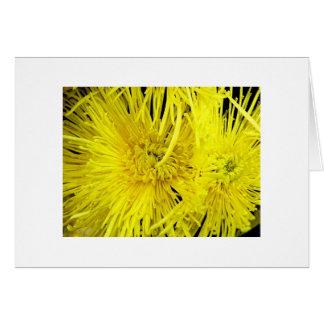 """Yellow Chrysthanthemums"" Card"
