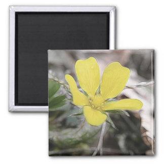 Yellow Cinquefoil Flower Magnet