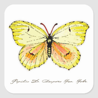 Yellow Cleopatra Butterfly Square Sticker
