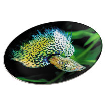 Yellow Cobra Guppy Porcelain Plate