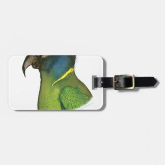 yellow collared macaw, tony fernandes luggage tag