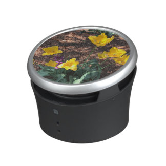 yellow colored tulip type flowers in spring bluetooth speaker