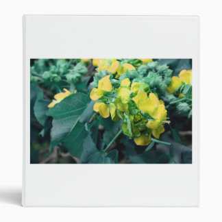 yellow colorized flowers with bee binders