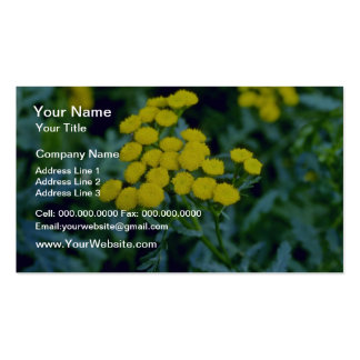 yellow Common Tansy (Tanacetum Vulgare Tanaisie) f Business Card Template