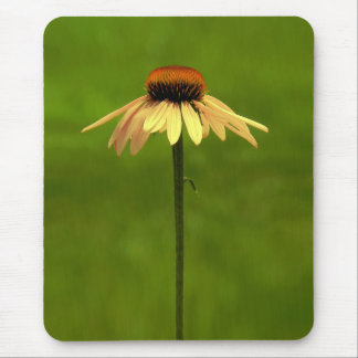 Yellow Coneflower Mouse Pad