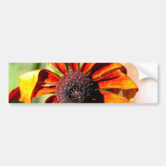 Yellow coneflower, or black-eyed-Susan Bumper Sticker