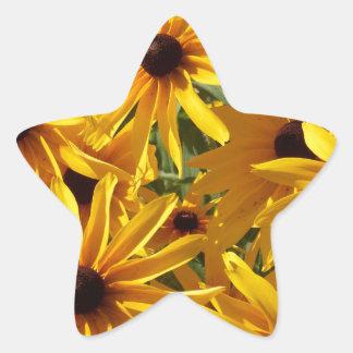 Yellow Coneflowers Star Sticker