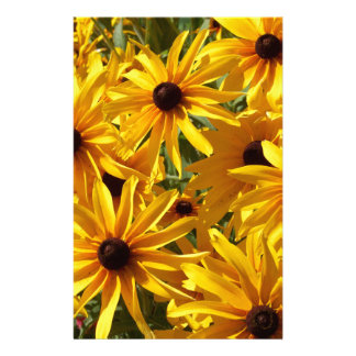 Yellow Coneflowers Stationery