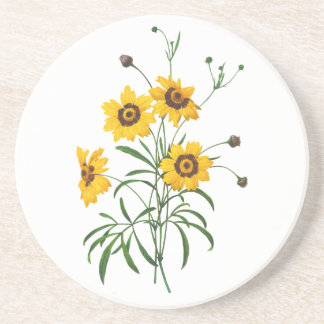 Yellow Coreopsis Elegans by Pierre Joseph Redoute Drink Coaster