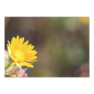 Yellow Coreopsis Flower Card