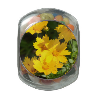 Yellow Coreopsis Jelly Belly Candy Jar