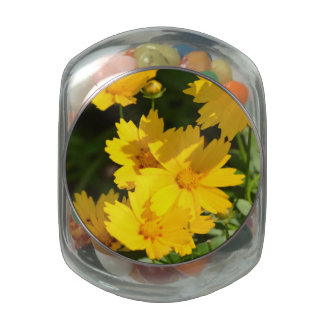 Yellow Coreopsis Jelly Belly Candy Jars