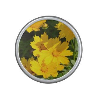 Yellow Coreopsis Speaker