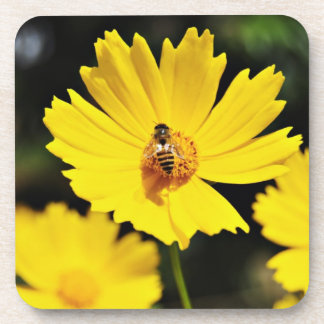 Yellow Cosmos Flower and Bee Drink Coaster