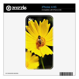 Yellow Cosmos Flower and Bee Decals For iPhone 4S