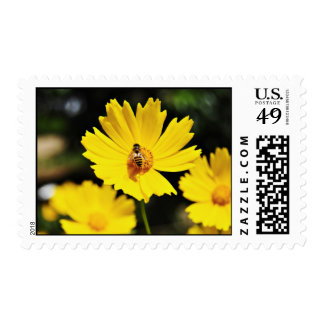 Yellow Cosmos Flower and Bee Postage