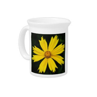 Yellow Cosmos Flower Close-up Beverage Pitcher