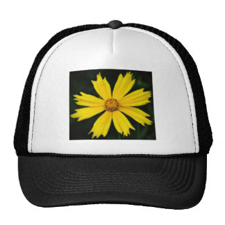 Yellow Cosmos Flower Close-up Trucker Hat