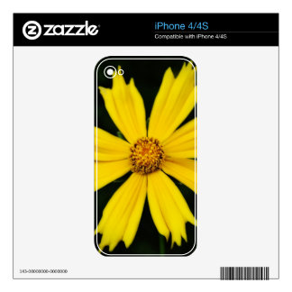 Yellow Cosmos Flower Close-up Skins For The iPhone 4S
