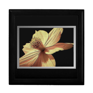 Yellow Cosmos Flower Picture Trinket Box