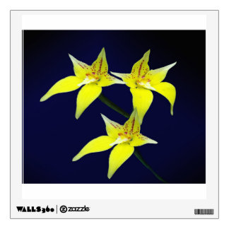 Yellow Cowslip Australian Orchid Flower Wall Decal