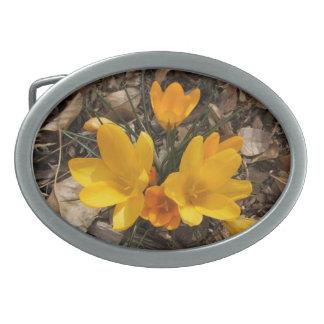 Yellow crocus flower belt buckle