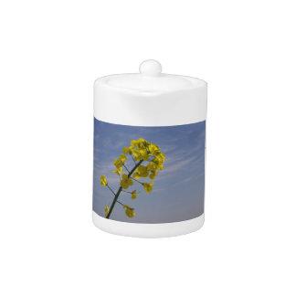 Yellow Crop Flower on Blue Sky background Teapot