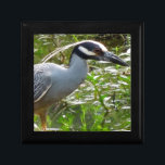 "Yellow Crown Night Heron Keepsake Box<br><div class=""desc"">Took the weekend off to take photos in South Louisiana and spotted this heron in a swampy bayou looking for dinner.</div>"