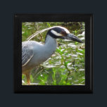 """Yellow Crown Night Heron Keepsake Box<br><div class=""""desc"""">Took the weekend off to take photos in South Louisiana and spotted this heron in a swampy bayou looking for dinner.</div>"""