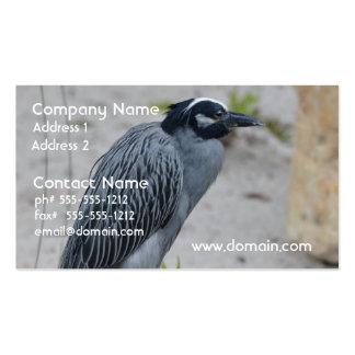Yellow Crowned Night Heron Bird Business Card