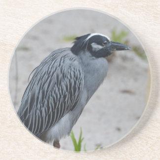 Yellow Crowned Night Heron Bird Beverage Coaster