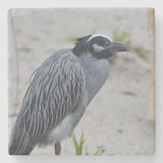 Yellow Crowned Night Heron Bird Stone Beverage Coaster