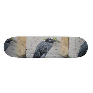 Yellow Crowned Night Heron Bird Skate Board Deck