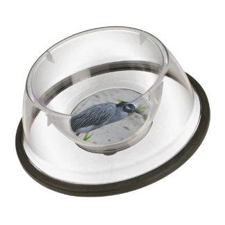 Yellow Crowned Night Heron Bird Pet Bowl