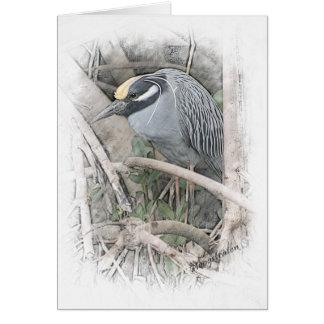 Yellow Crowned Night Heron Card