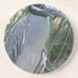 Yellow Crowned Night Heron Coaster