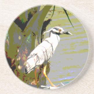 Yellow-crowned Night Heron Coasters