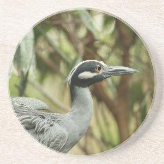 Yellow-crowned Night Heron Coaster