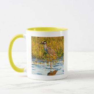 Yellow-Crowned Night-Heron (Nyctanassa Violacea) Mug
