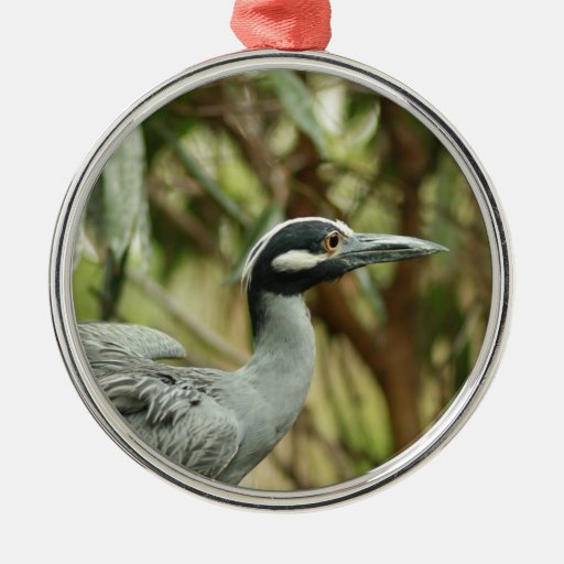 Yellow-crowned Night Heron Christmas Tree Ornaments